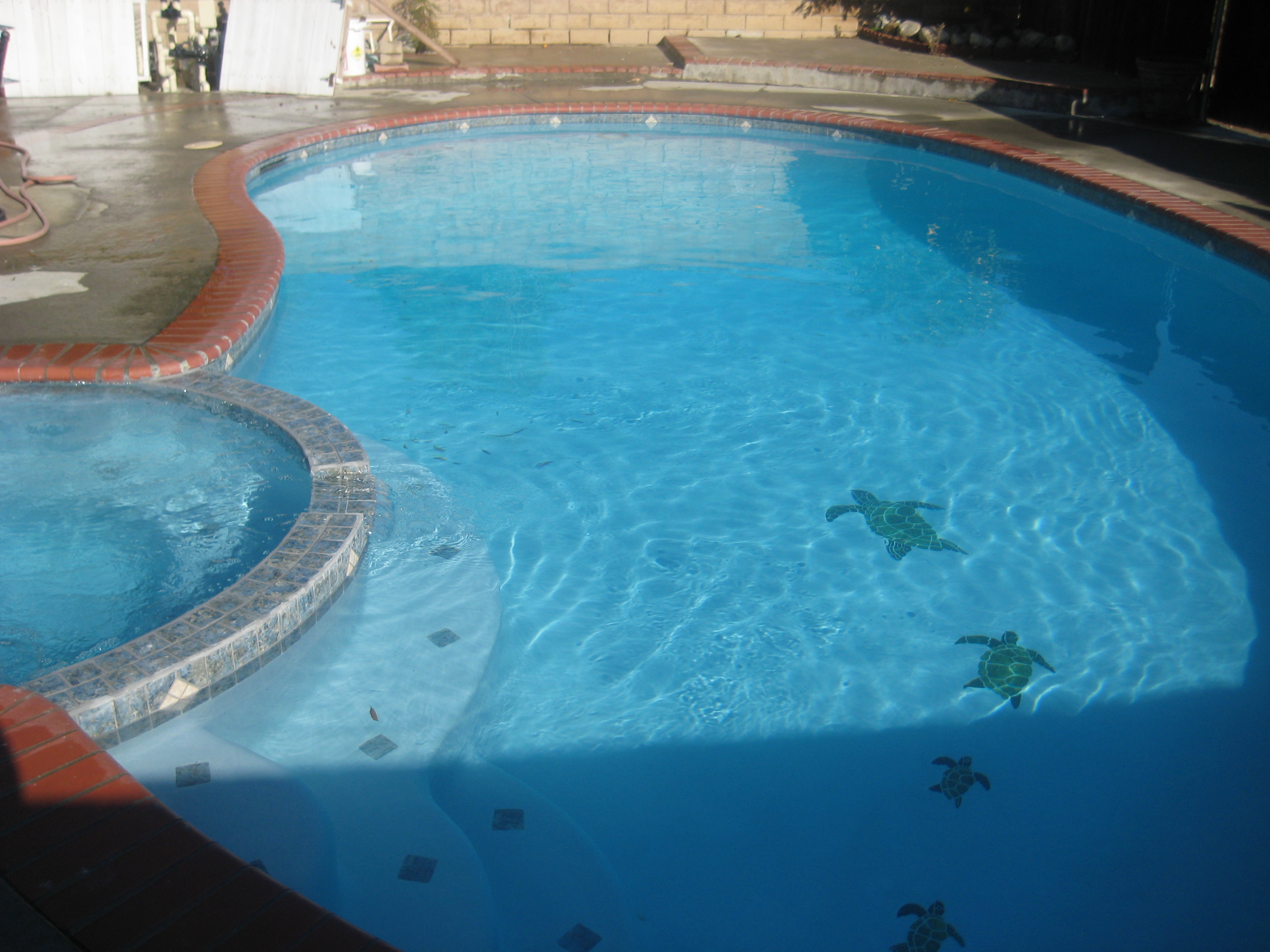 Trinity Custom Pools Swimming Pool 3m Colored Plaster